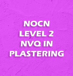 Plaster NVQ Button.png