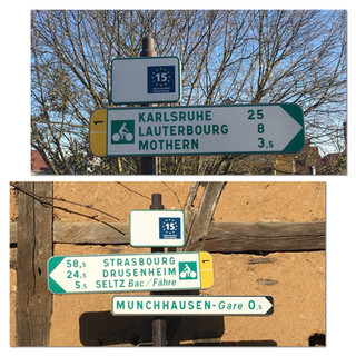 Vélo route d'Alsace 15