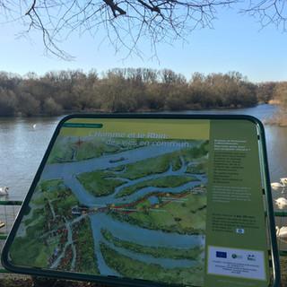 Munchhausen - Delta de la Sauer