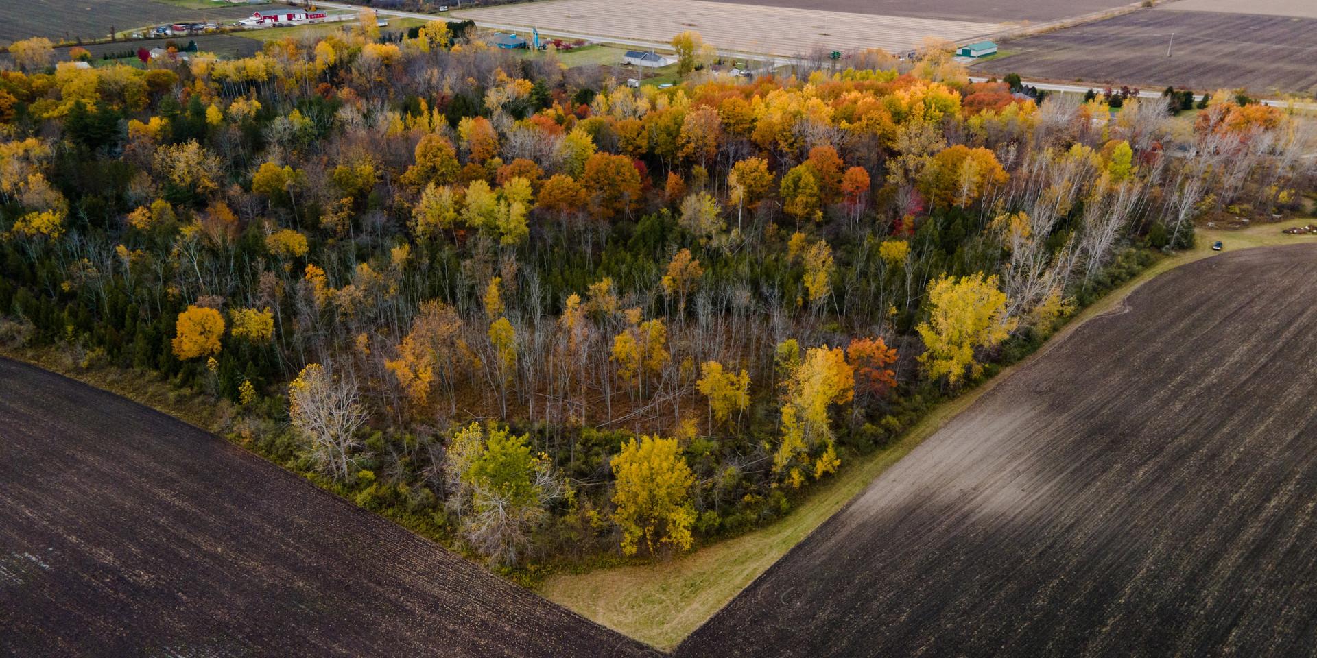 In Season Property-13 small.jpg