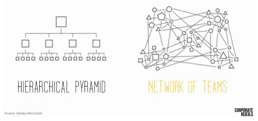 Pyramid vs Network