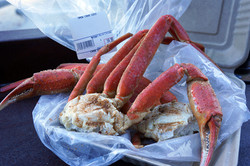Snow crab by the pound