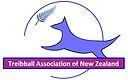 TANZ logo blue fern.jpg