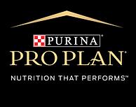 proplan logo 2021.png
