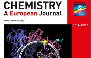 Highlight on the Cover Page of Chemistry - A European Journal