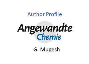 Author Profile in Angewandte Chemie