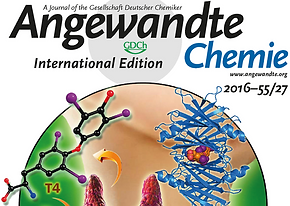 Highlight of our Review on the Cover Page in Angewandte Chemie