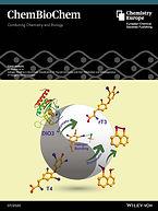 cbc-cover-2020.jpg