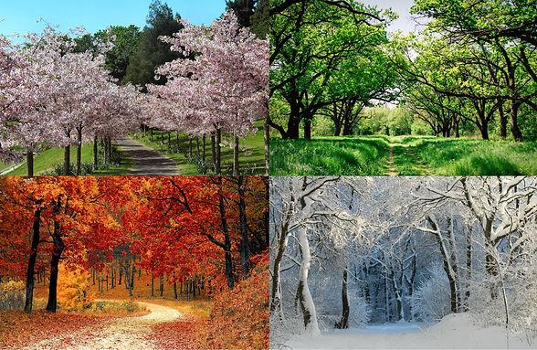 la naturopathie au fil des saisons