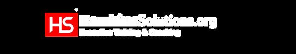 HawkinsSolutions.org logo.png