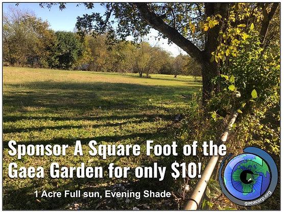 Sponsor 1 sqft of the GAEA Garden