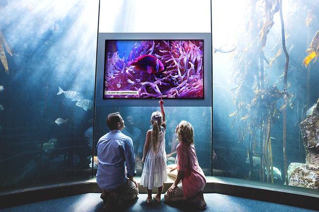 Philips-D-Line-Public-Venue-Aquarium.jpg