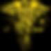 NP Logo Gold.png