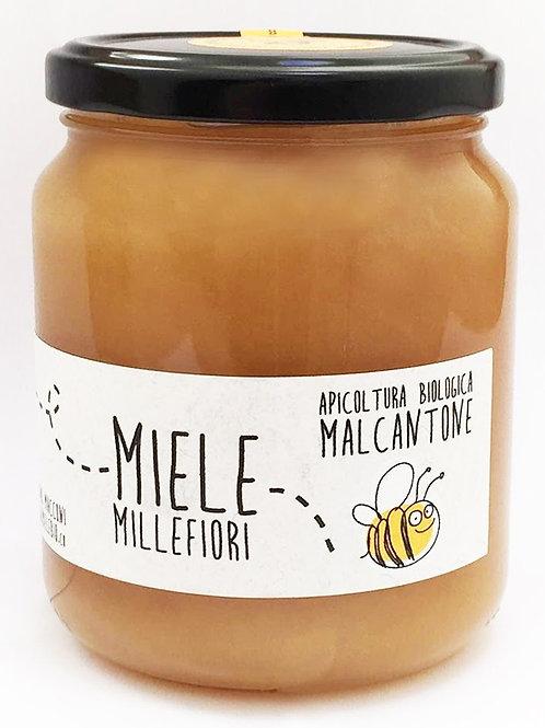 Miele millefiori Bio del Malcantone - Guido Macconi
