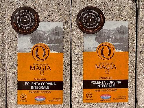 Farina di mais corvino del Ticino