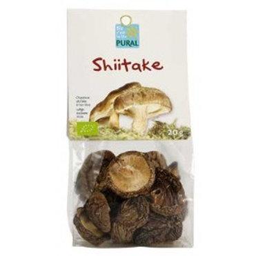 Pural Shiitake getrocknet