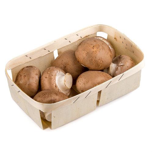 Funghi champignons marroni
