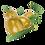 Thumbnail: Olive verdi