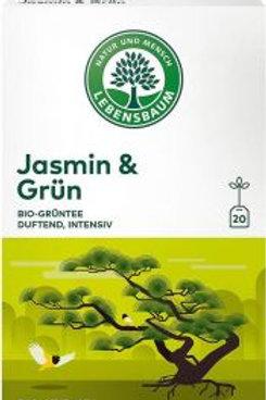 Thè verde & Jasmin (in bustine) - Lebensbaum