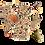 Thumbnail: Barretta mix semi