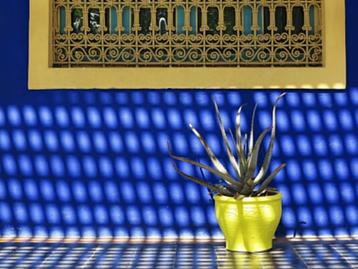 ברוכים הבאים ל Yves Saint Laurent's Jardin Marjorelle in Marrakesh