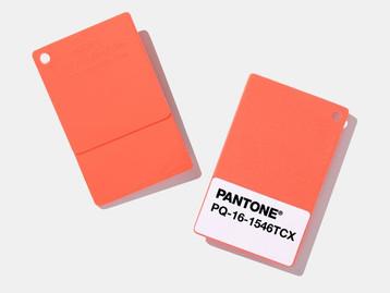 צבעי השנה 2019 של חברת הצבעים PANTONE