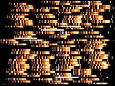 DistantSpectra_ESO_960.jpg