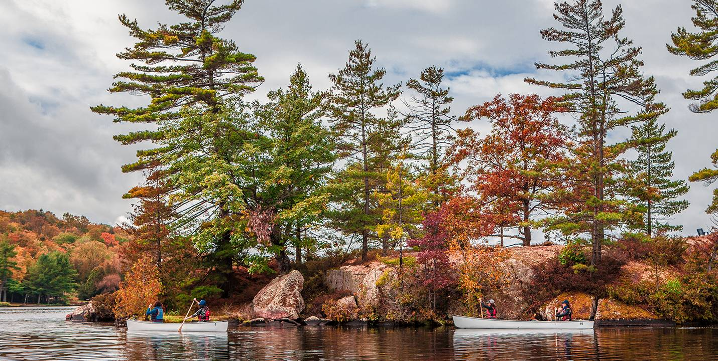 Lovesick Lake Ontario Picture