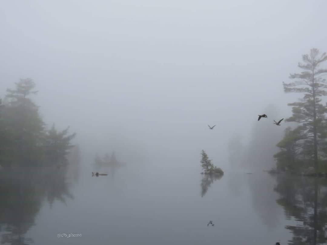 Lovesick Lake Ontario Fog