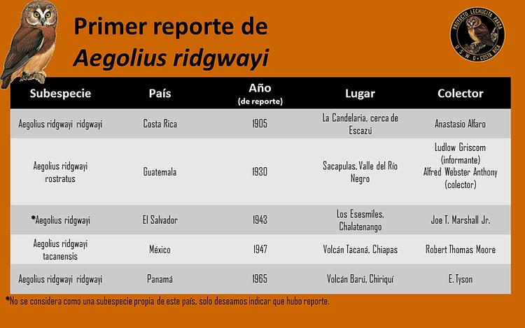 Reporting USWOsp.png