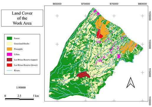 land_cover_map.jpeg
