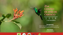 21er Conteo de Aves de Cartago