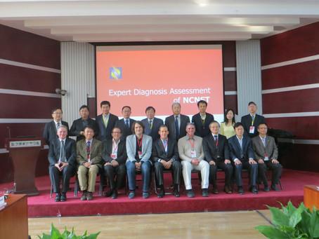 Panel review Nanocenter Beijing 16.11.14