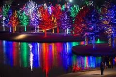 Grand Junction Christmas Lights tour!