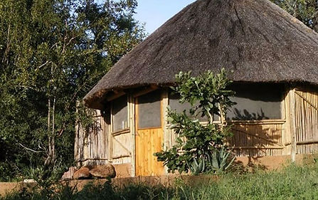 The Lost Society, South Africa, Kruger Eco Safari, Timbavati
