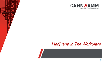CannAmm.png