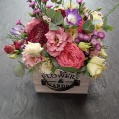 Kochlík lúčnych kvetov