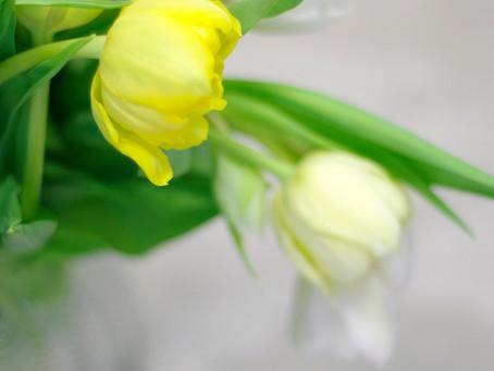 Etiketa kvetov