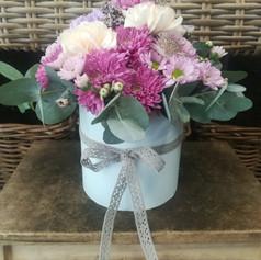 Romantické chryzantémy