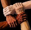 Canva - hands.png