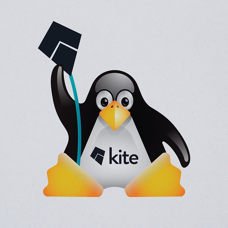 Kite-pinguin-3.jpg