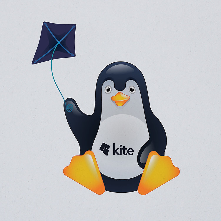 Kite-pinguin-2.jpg