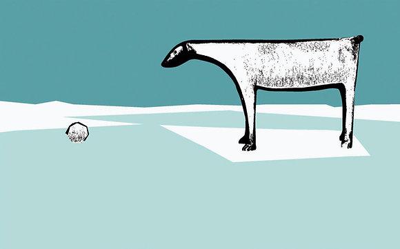 Isbjørnhund på is