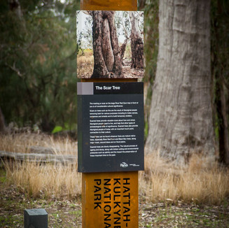 Murray River Red Gum Signage