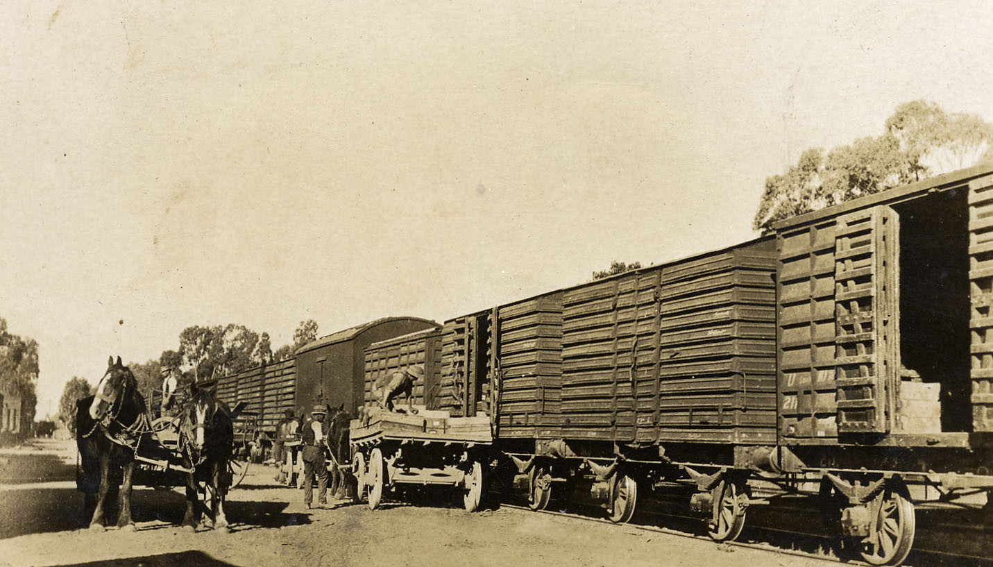 Ardmona_Loading_Fruit_Railway.jpg
