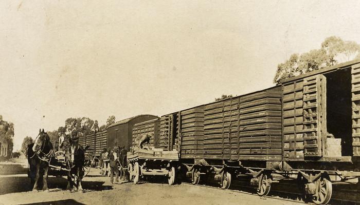 Ardmona_Loading_Fruit_Railway.jpg