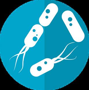 Endometriosis and the microbiome