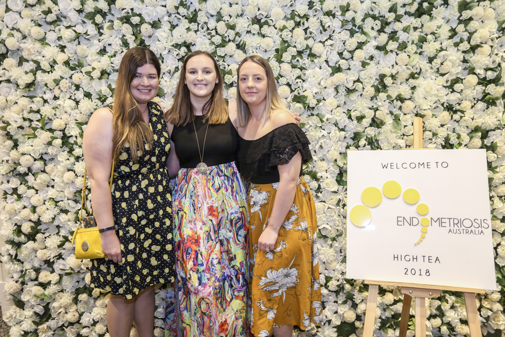 Endometriosis Event 2018_20