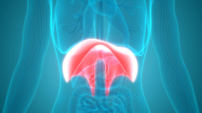 Endometriosis of the Diaphragm and the Chest