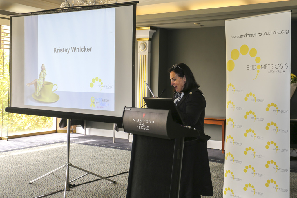 Endometriosis Event 2018_16
